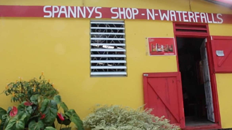 Spannys Shop