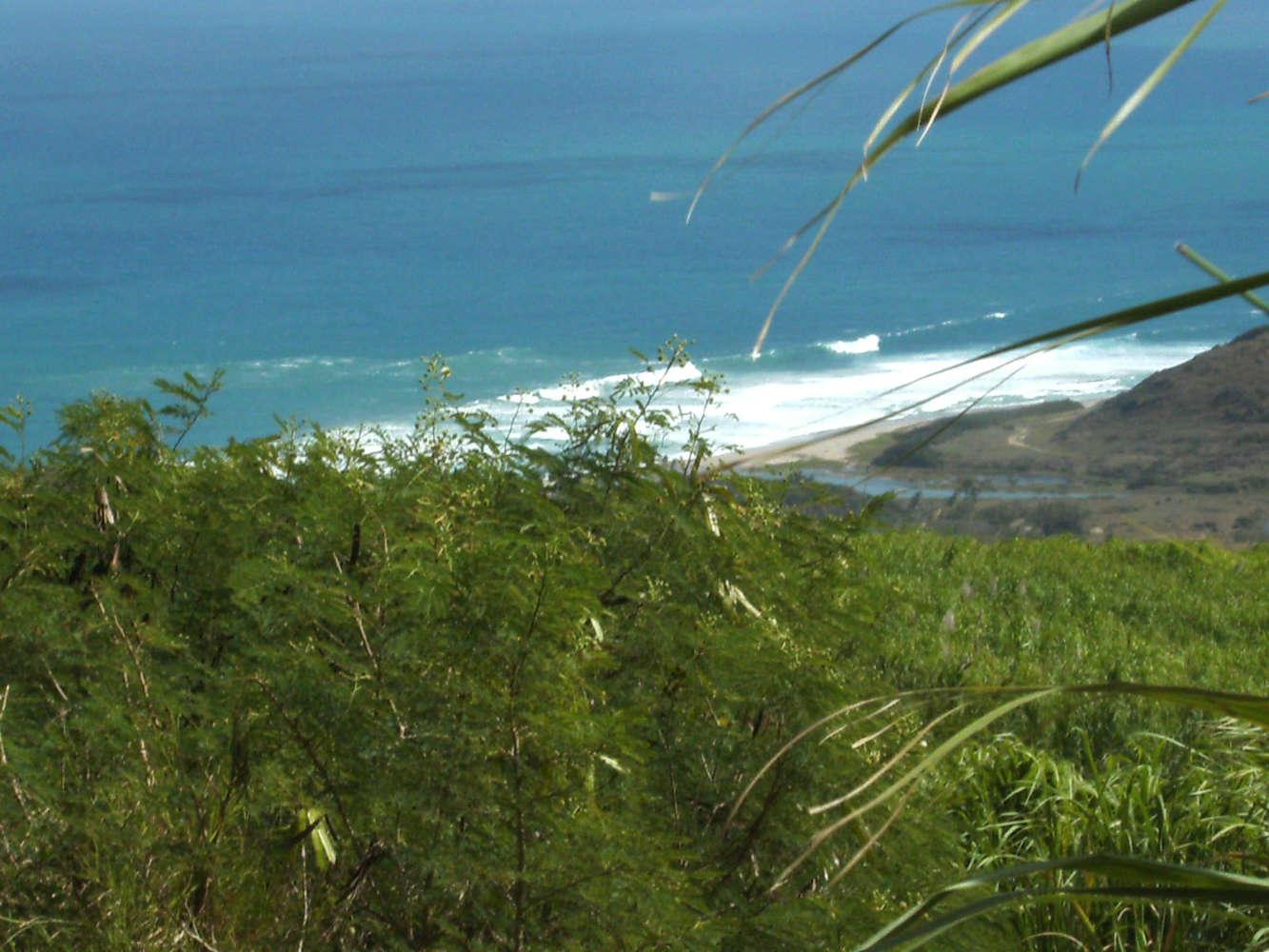 Strand von oben betrachtet