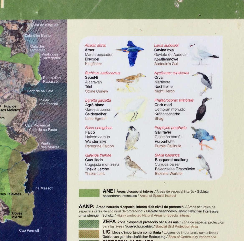 Vogelschutzgebiet in Canyamel