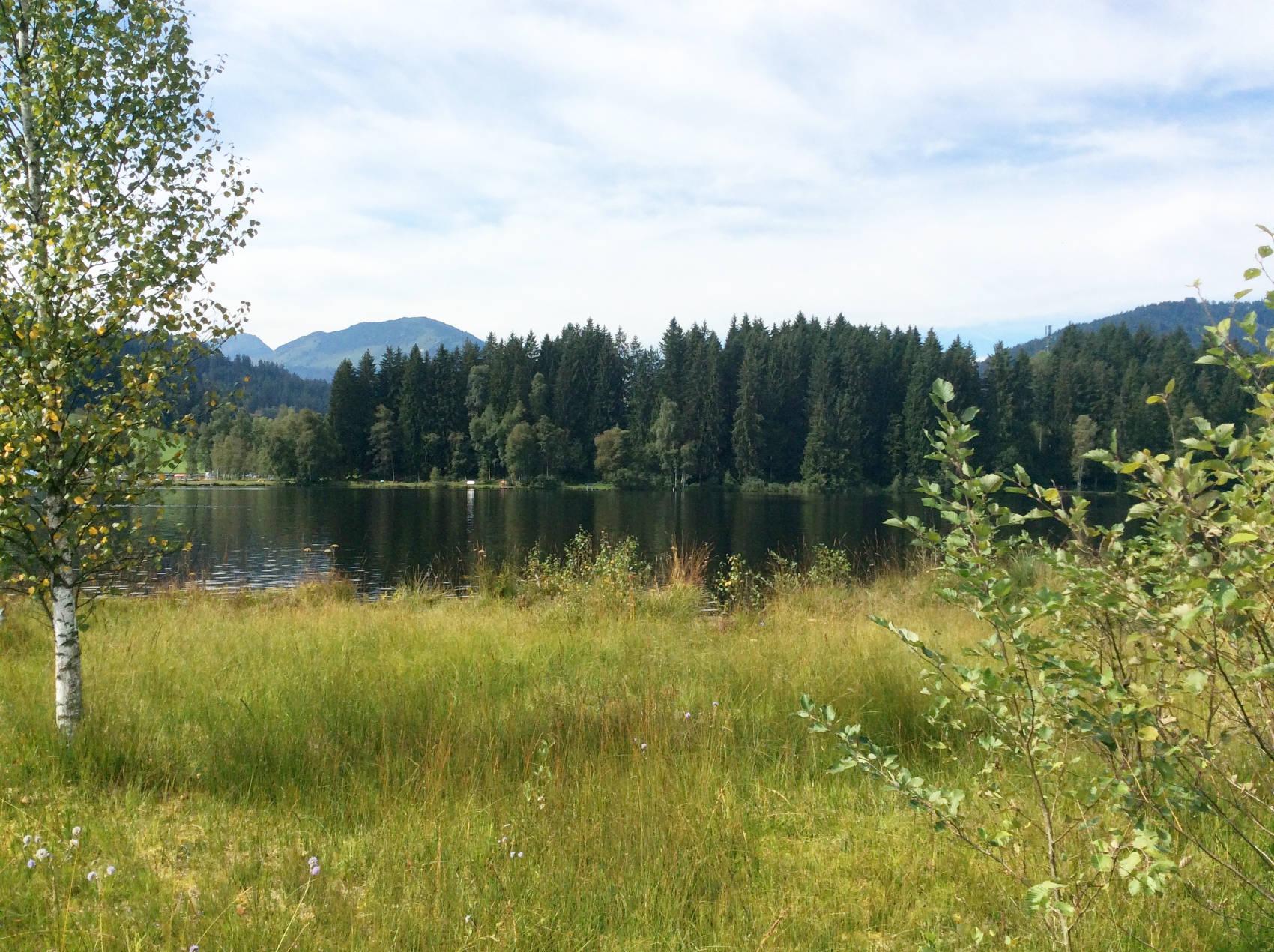 Ausblick auf den See