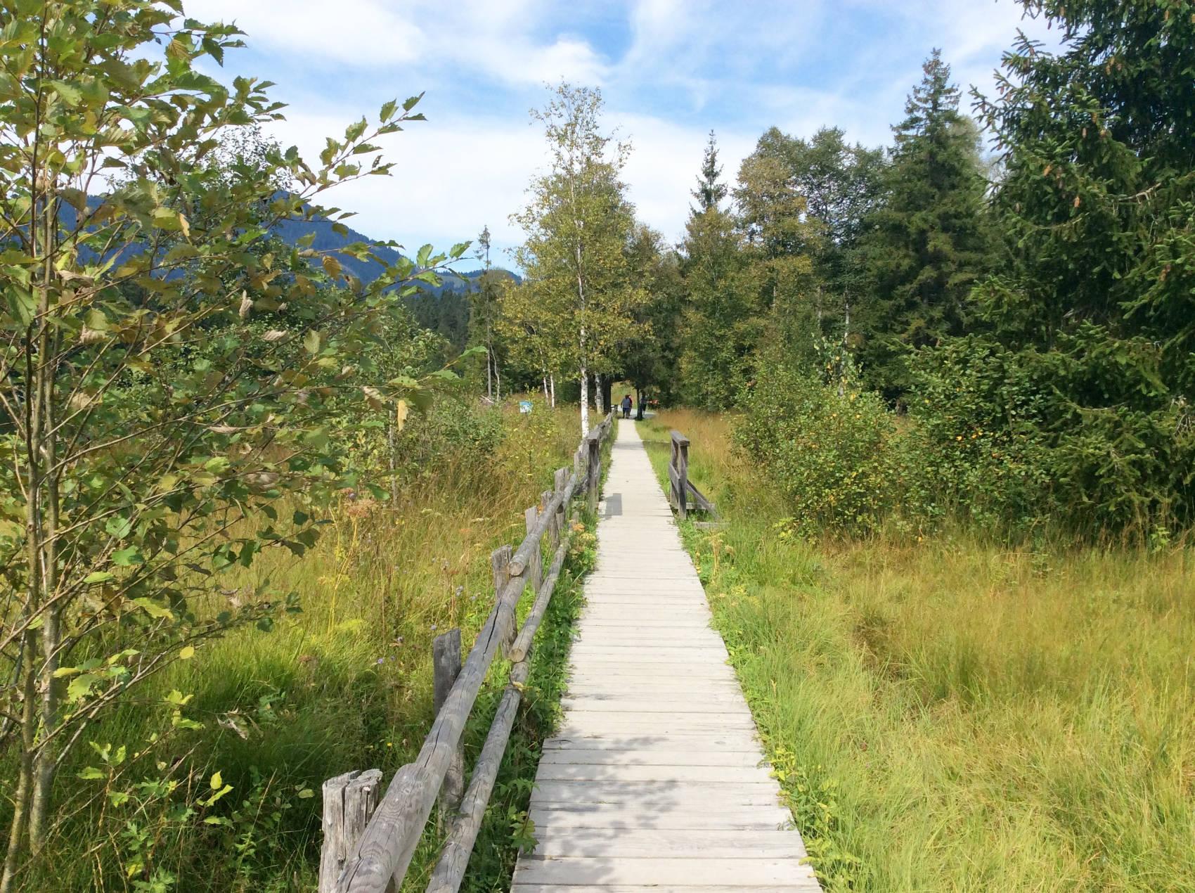 Über Holzbrücken um den Schwarzsee