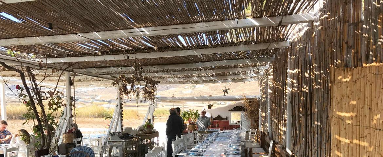 Weingut auf Mykonos
