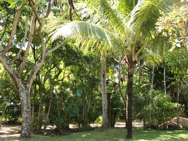 Hotel Praia do Forte - Garten