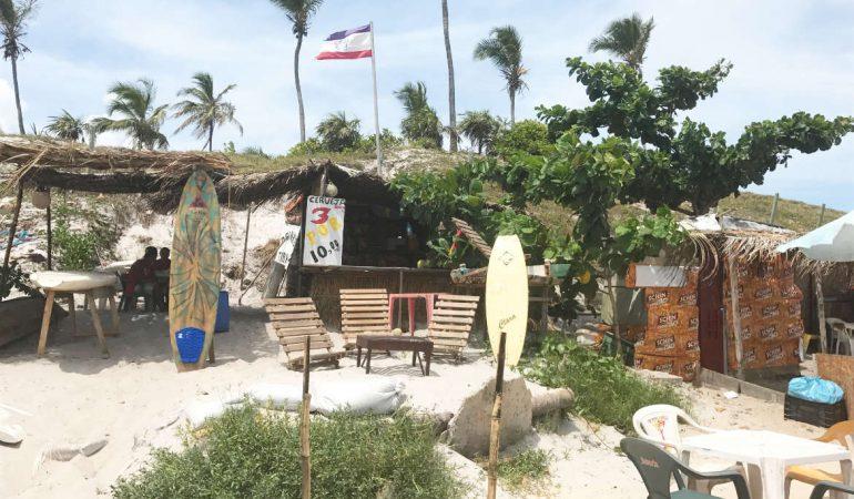 Die Palmenküste in Bahia
